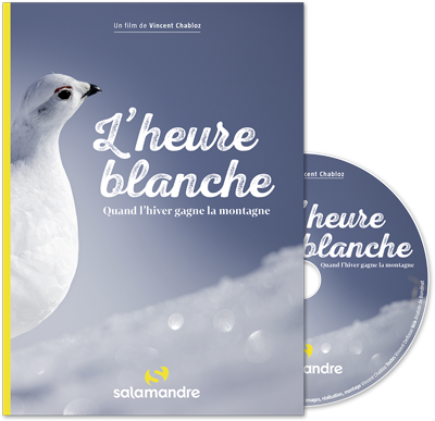 DVD L'heure blanche