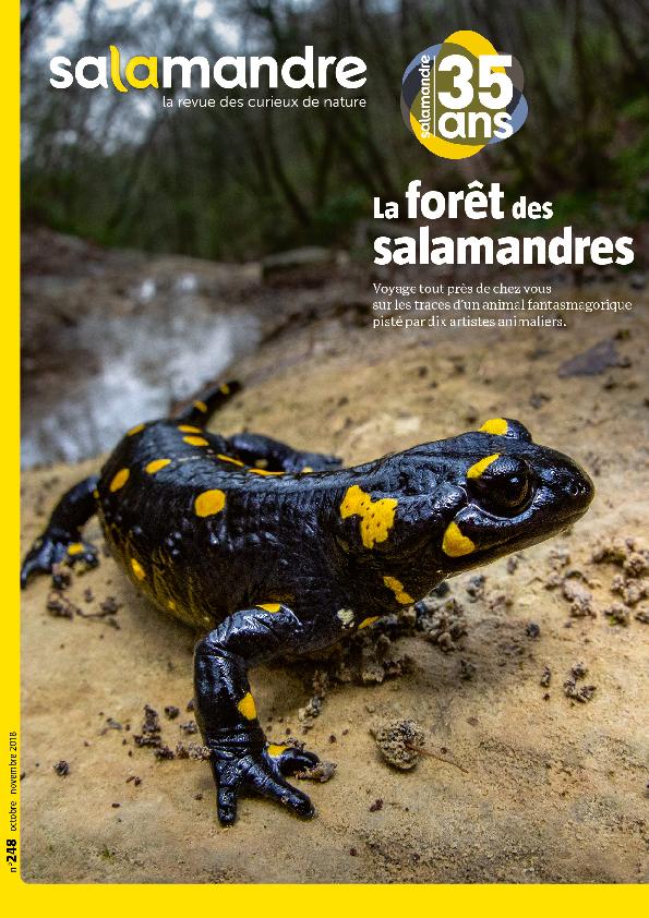 La forêt des salamandres (N°248)