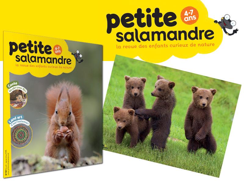 La Petite Salamandre, abonnement 1 an