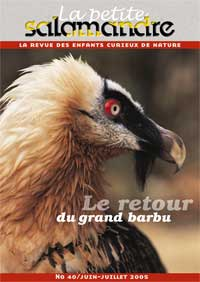 Le retour du grand barbu (N°40)