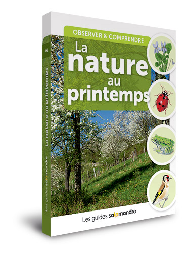 Livre-guide-la-nature-au-printemps