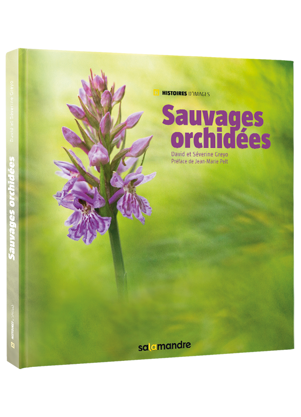 Livre-Sauvages-orchidees