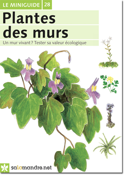 miniguide 28 plantes des murs la salamandre. Black Bedroom Furniture Sets. Home Design Ideas