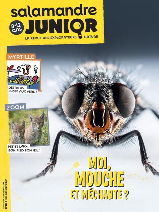 [Jeu] Suite d'images !  - Page 30 Moi-mouche-et-m%C3%A9chante-n113_fr_838
