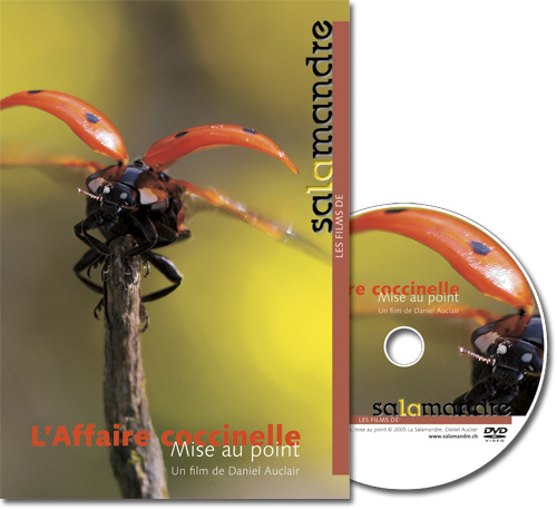 DVD - L'affaire coccinelle