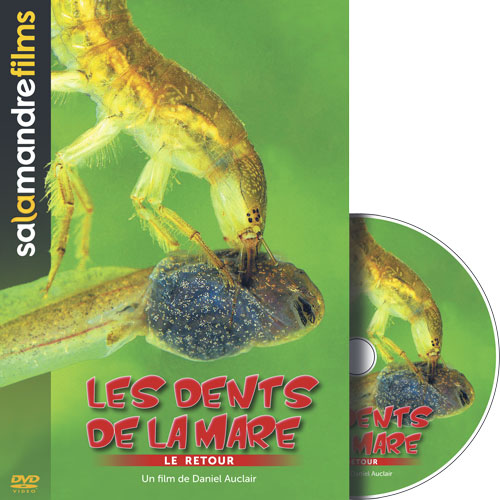DVD - Les dents de la mare