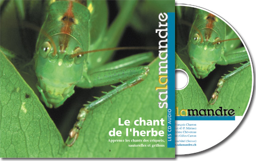 CD audio - Le chant de l'herbe