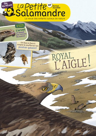 Royal, l'aigle !