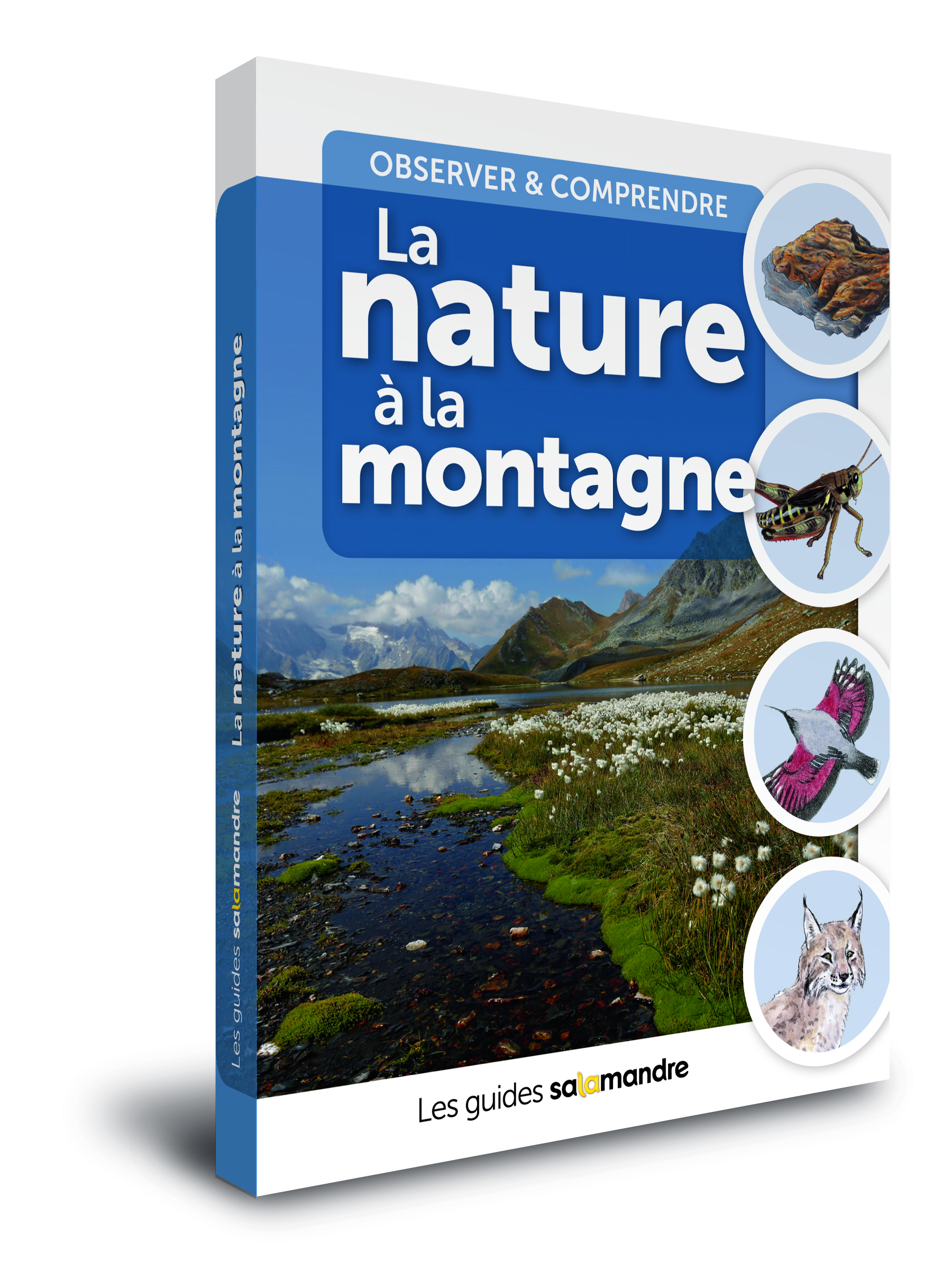 guide nature à la montagne